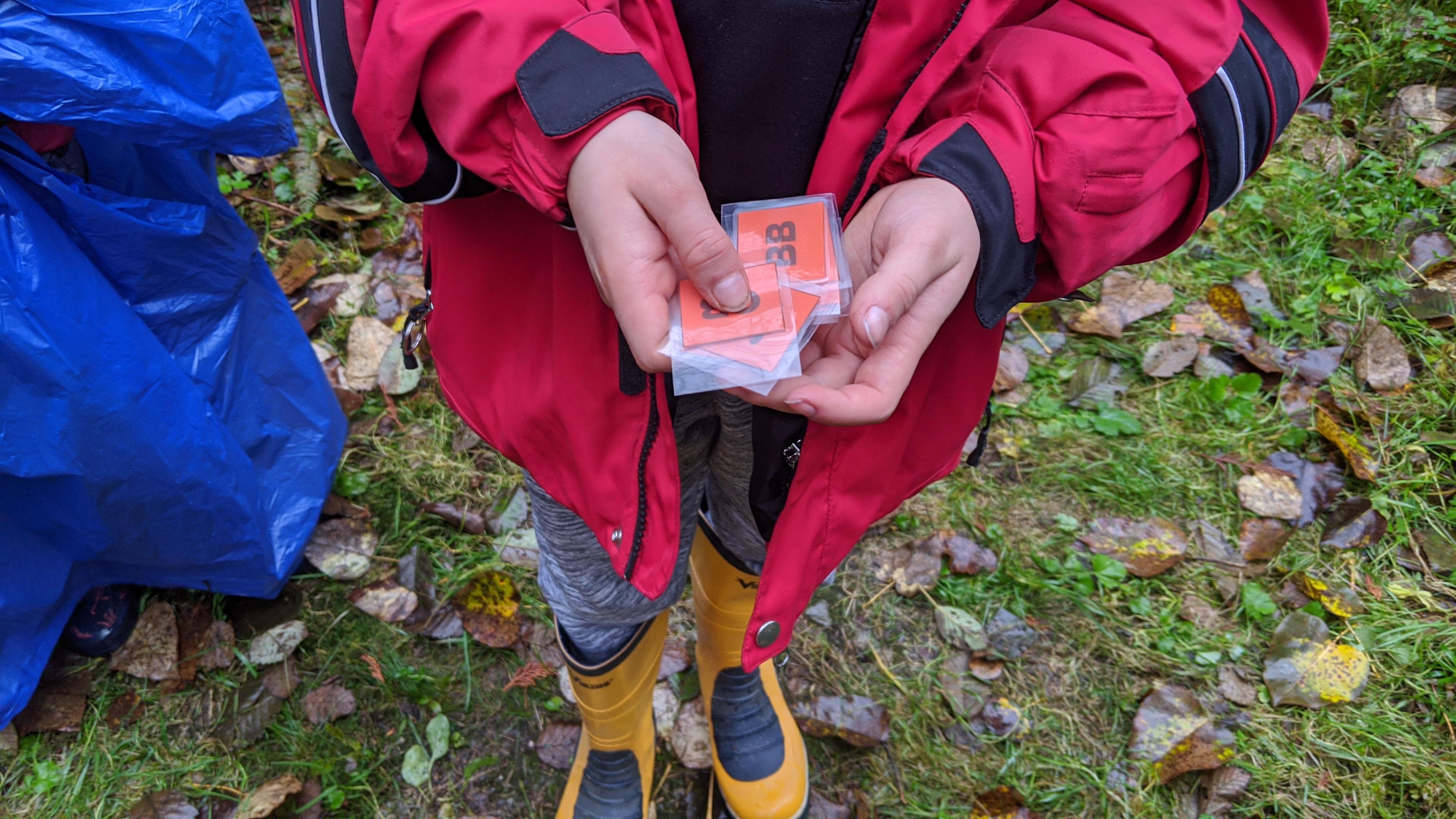 Salmon card game.