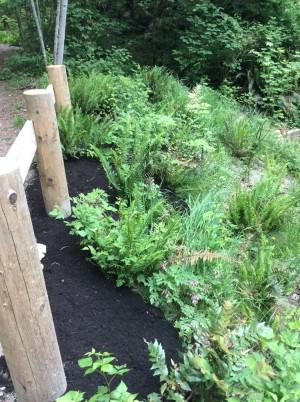 mossom creek garden