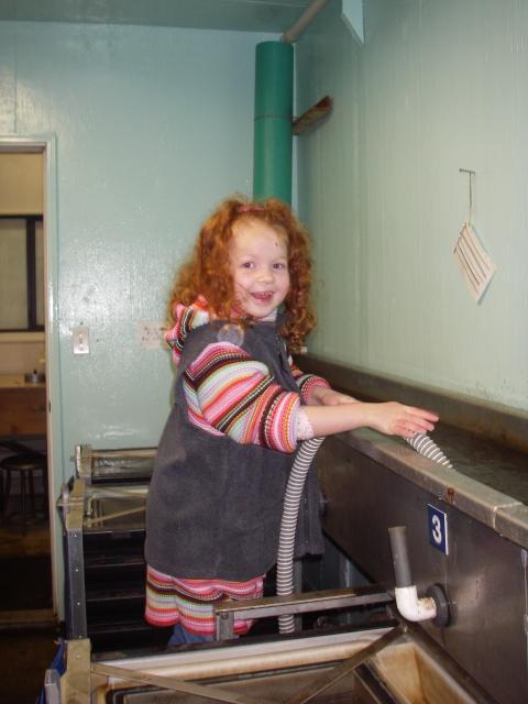 Ella 2008