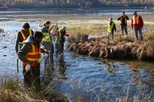 volunteers standing in Mossom Creek